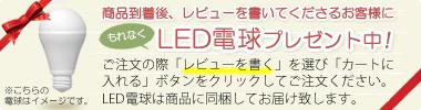 商品到着後に〔ガレ ランプ〕レッドローズのレビューを書いて頂けるお客様にLED電球プレゼント中!