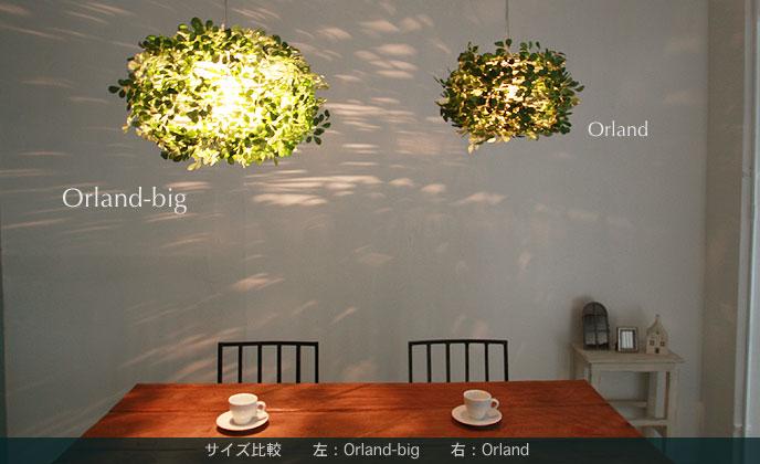 Orland-bigオーランドビッグLP3005とオーランドのサイズ比較