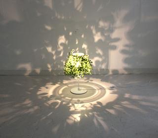 Foresti table lampフォレスティテーブルランプLT3692の照明詳細画像1