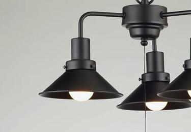 アンナプルナ(1灯用CP型黒) 〔GLF-3460〕の照明詳細画像1
